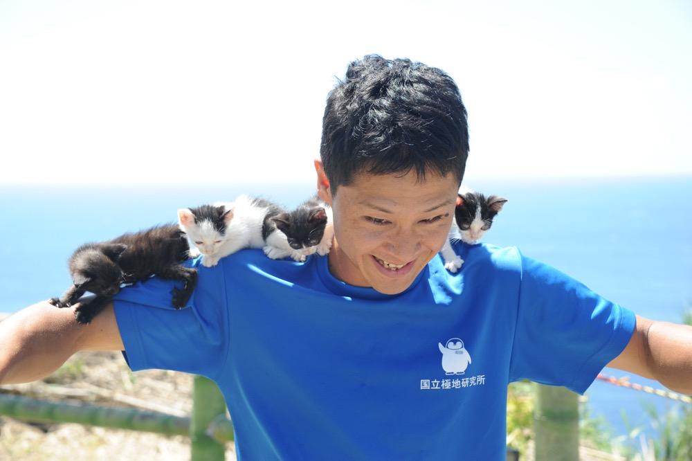 離島で育つ。引き取られた4匹の仔猫のその後は…?