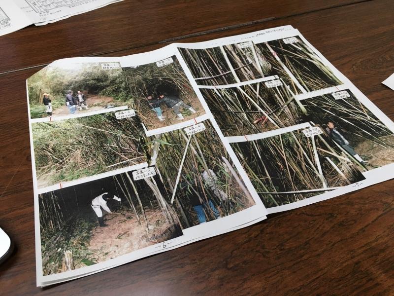 竹の第一人者 濱田先生が調査結果を持って来て下さいました!