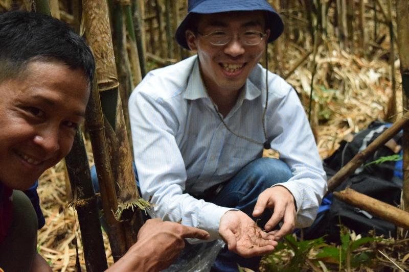 竹島で珍しいランの調査!絶滅危惧種の植物発見!!