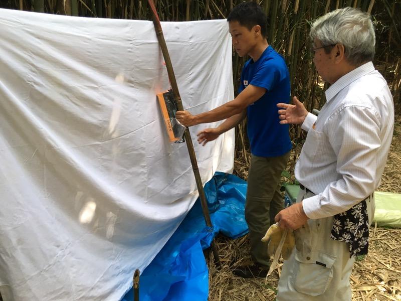 大名筍の竹林にはびこる害虫の調査!