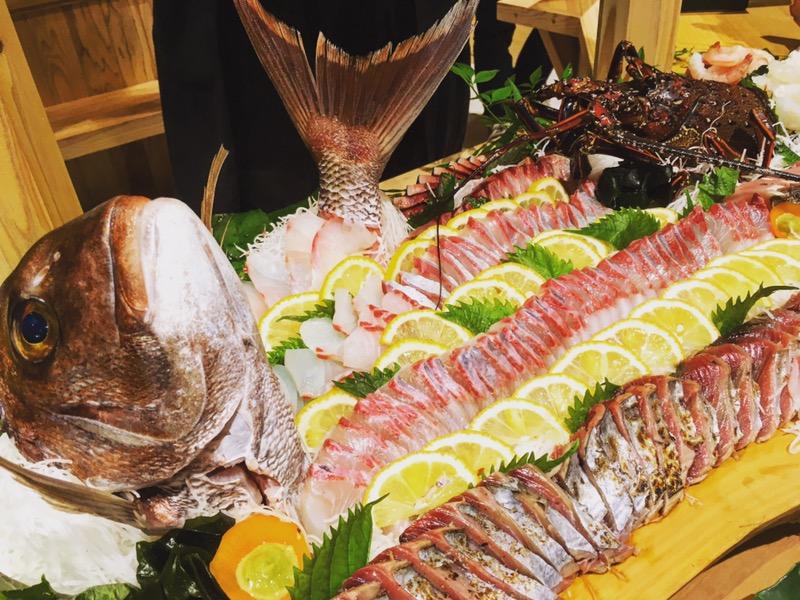 甑島へ初上陸!KOSHIKI FISHERMANS FES 2016!!