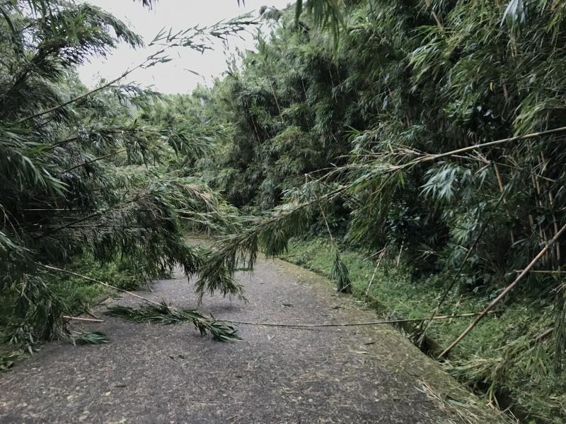 台風10号の被害と、これから必要なこと